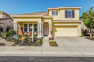 Concord Single Family Home For Sale: 1295 Kestrel Court