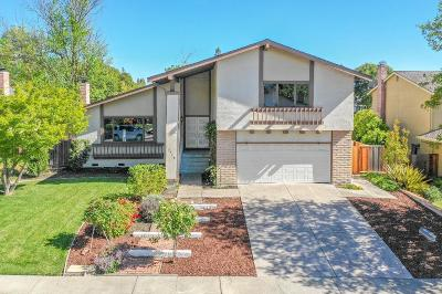 San Ramon Single Family Home For Sale: 3360 Camarones Place