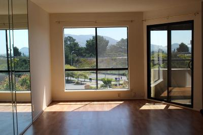 Daly City Condo/Townhouse For Sale: 1551 Southgate Avenue #333