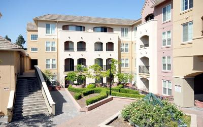 San Jose Condo/Townhouse For Sale: 1550 Technology Drive #2058