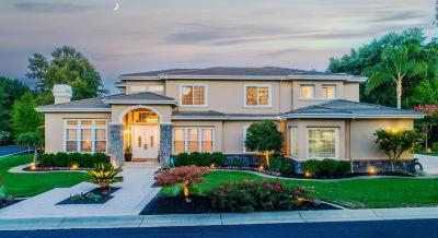 Pleasanton Single Family Home For Sale: 434 Mares Court