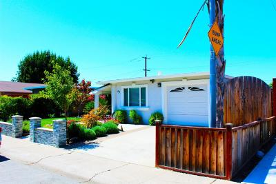 Milpitas Single Family Home For Sale: 39 Carnegie Drive