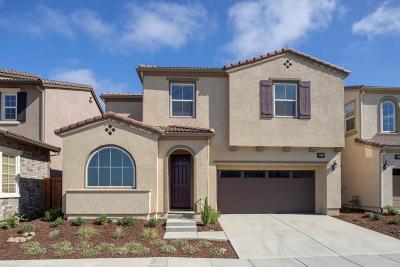 Alameda County Single Family Home For Sale: 28712 Vista Grande Drive