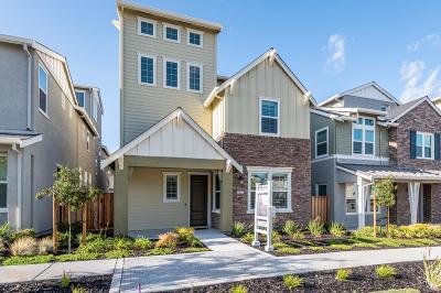 Dublin Single Family Home For Sale: 7254 Mount Veeder Road