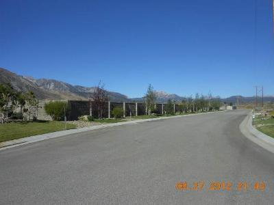 Mammoth Lakes Residential Lots & Land Active-Extended: 103 Industrial