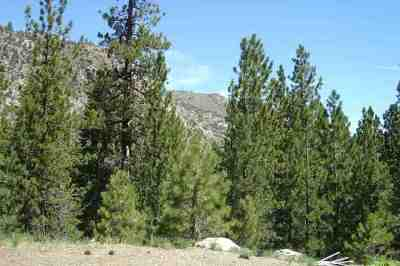 June Lake Residential Lots & Land Active-Extended: Piute Drive