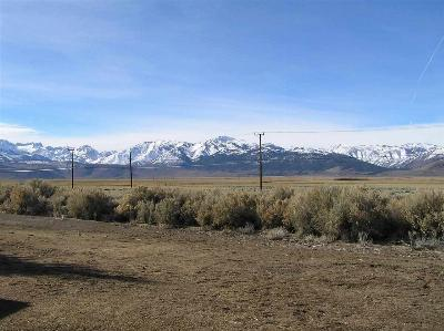 Bridgeport Residential Lots & Land Active-Extended: Lots 5 & 6 Us Hwy. 395