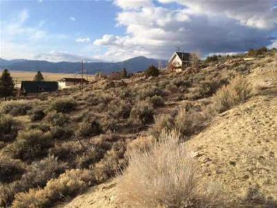 Bridgeport Residential Lots & Land Active-Extended: Lot 9 Rickey Peak Rd.