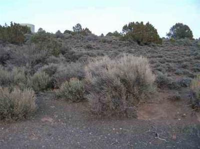 Bridgeport Residential Lots & Land Active-Extended: Lot 5 Rickey Peak Road