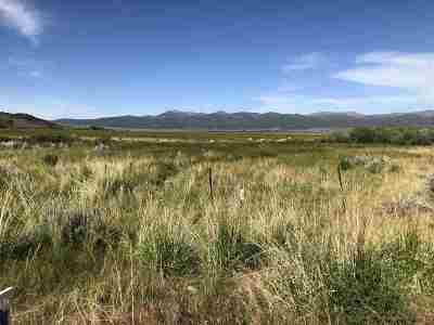 Bridgeport Residential Lots & Land Active-Extended: Parcel 1 Pm 32-32 Highway 395