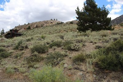 June Lake Residential Lots & Land Active-Extended: 132 Highland Drive
