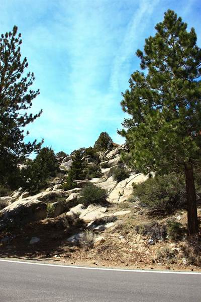 June Lake Residential Lots & Land Active-Extended: Bruce Street