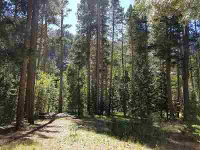 June Lake Residential Lots & Land Active-Extended: 135 Dream Mtn. Drive