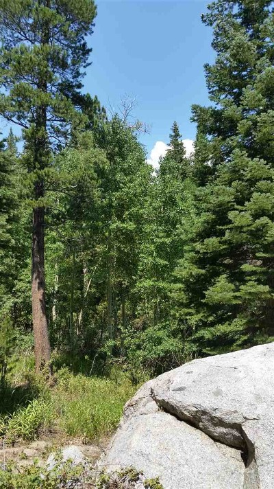 Mammoth Lakes Residential Lots & Land Active-Extended: 2344 Old Mammoth