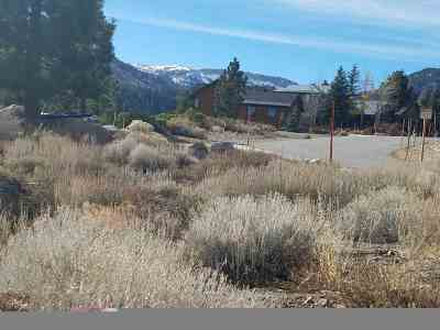 Mammoth Lakes Residential Lots & Land Active-Extended: 5 Ridgeway