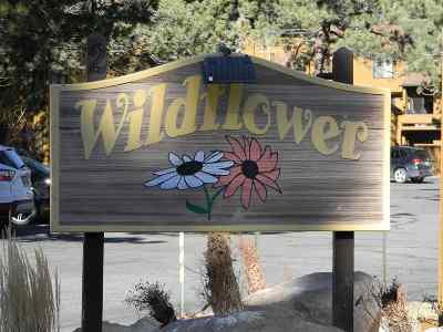 Mammoth Lakes Condo/Townhouse For Sale: 2 Arrowhead Drive #27