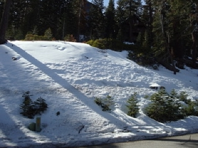 Mammoth Lakes Residential Lots & Land For Sale: 307 John Muir Rd., Lot #8