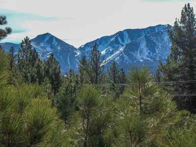 Mammoth Lakes Residential Lots & Land Active-Price Chg: 119 Holiday Way