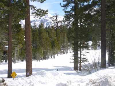 Mammoth Lakes CA Condo/Townhouse Active Under Contract: $289,000