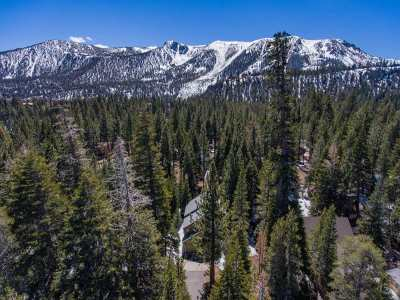Mammoth Lakes Single Family Home For Sale: 79 Alexander Ln
