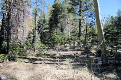 June Lake CA Residential Lots & Land Active-Price Chg: $155,000