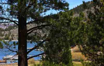 June Lake CA Residential Lots & Land For Sale: $99,000