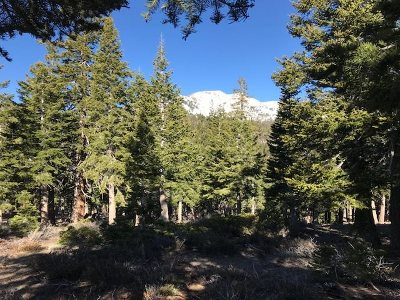 Mammoth Lakes Residential Lots & Land For Sale: 145 Pine Street