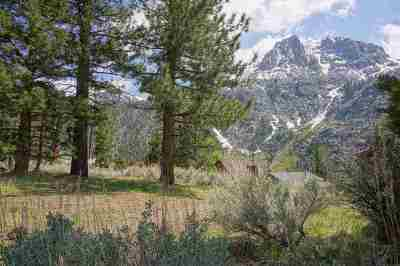 June Lake CA Residential Lots & Land Active-Price Chg: $229,000