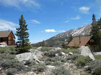 Virginia Lakes CA Residential Lots & Land For Sale: $45,000