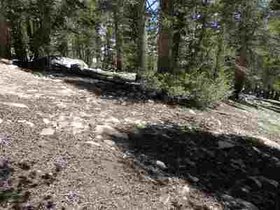Virginia Lakes CA Residential Lots & Land For Sale: $39,000
