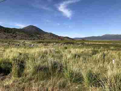 Bridgeport Residential Lots & Land For Sale: Lot 3 Highway 395