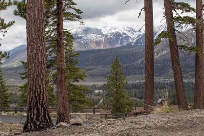 Mammoth Lakes Residential Lots & Land For Sale: 83 Bridges Lane