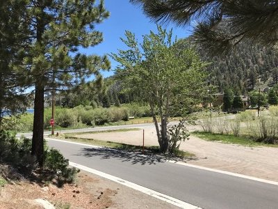 June Lake Residential Lots & Land Active-Extended: Corner Of Alderman Knoll Bruce Street