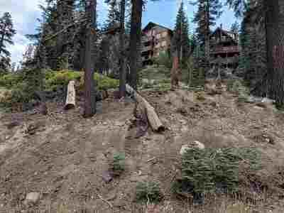 Residential Lots & Land For Sale: 317 John Muir