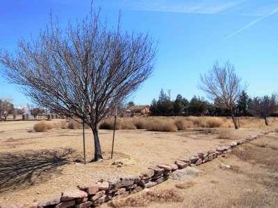 Big Pine, Bishop Residential Lots & Land For Sale: 380 Majorca Circle