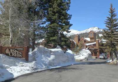 Mammoth Lakes Condo/Townhouse Active Under Contract: 865 Majestic Pines Drive #306