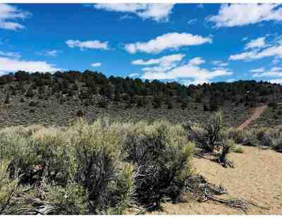 Bridgeport Residential Lots & Land For Sale: Hwy 395