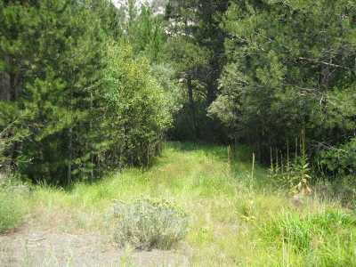 June Lake Residential Lots & Land For Sale: Lot 6 Hwy 158