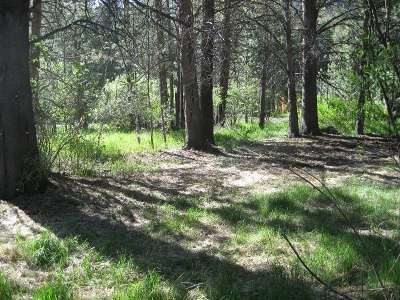 June Lake Residential Lots & Land For Sale: Lot 7 Venice St.
