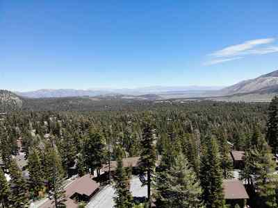 Mammoth Lakes Residential Lots & Land For Sale: 297 John Muir Road