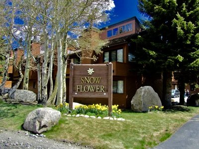 Mammoth Lakes Condo/Townhouse For Sale: 4710 Minaret Road, #34