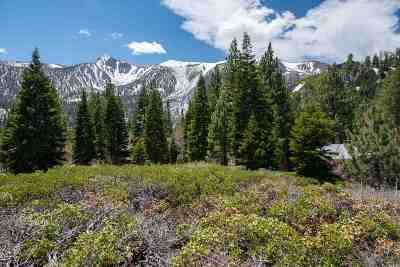 Mammoth Lakes Residential Lots & Land For Sale: 229 Summit Street