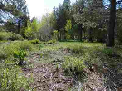 June Lake Residential Lots & Land For Sale: Lot 12 Aspen Grove