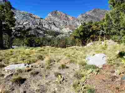 June Lake Residential Lots & Land For Sale: Steelhead Rd
