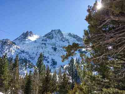 June Lake Residential Lots & Land For Sale: Steelhead
