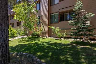 Mammoth Lakes Condo/Townhouse For Sale: 161 Horseshoe Dr #2