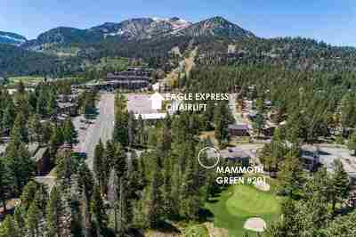 Mammoth Lakes Condo/Townhouse Active Under Contract: 1500 Lodestar Drive #201