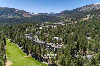 Mammoth Lakes Condo/Townhouse For Sale: 1500 Lodestar Drive #121