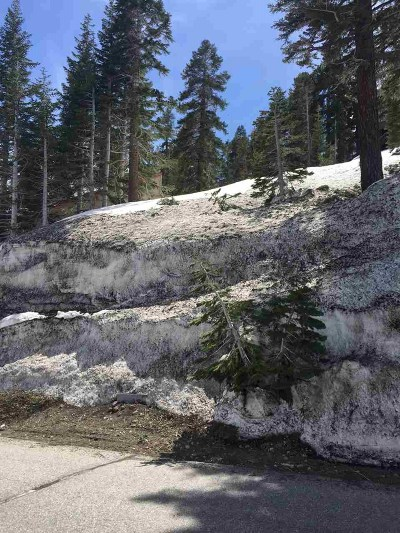 Mammoth Lakes Residential Lots & Land For Sale: 297 John Muir