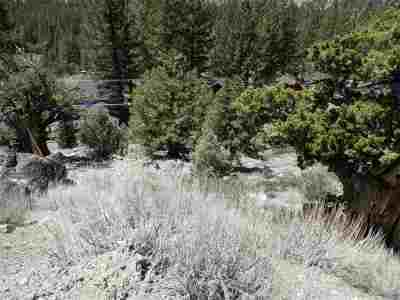 June Lake CA Residential Lots & Land For Sale: $259,000